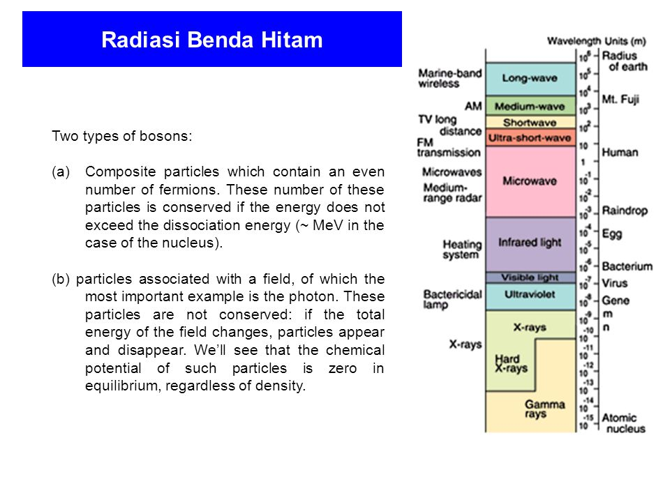Radiasi Benda Hitam Two types of bosons: