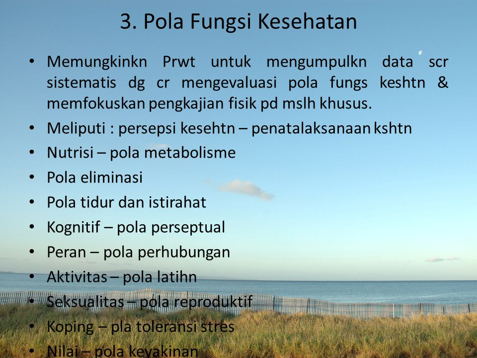 3. Pola Fungsi Kesehatan