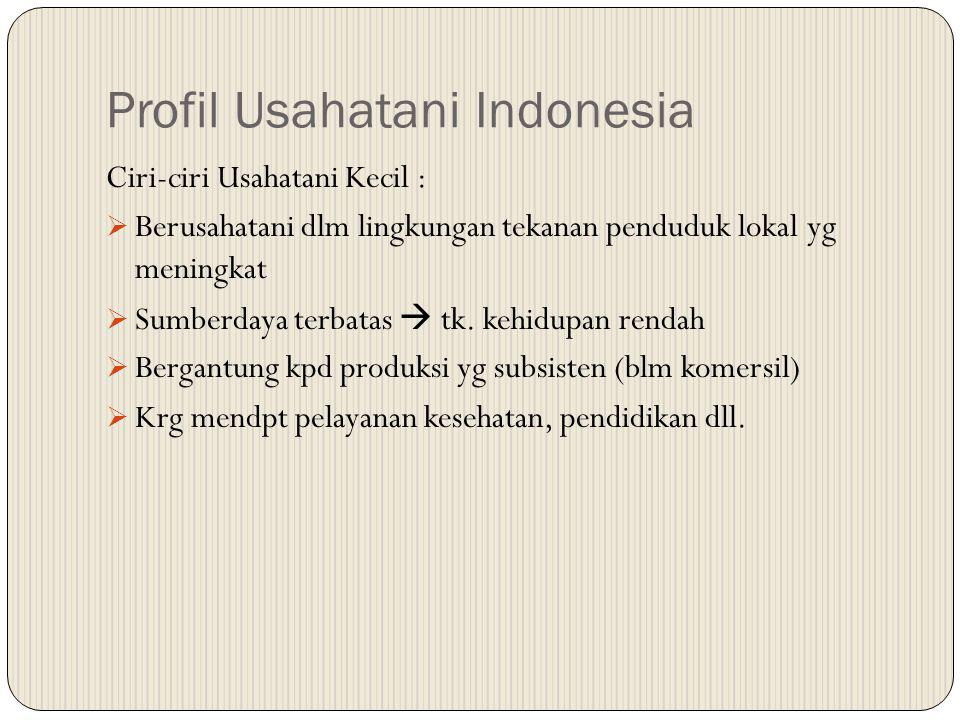 Profil Usahatani Indonesia