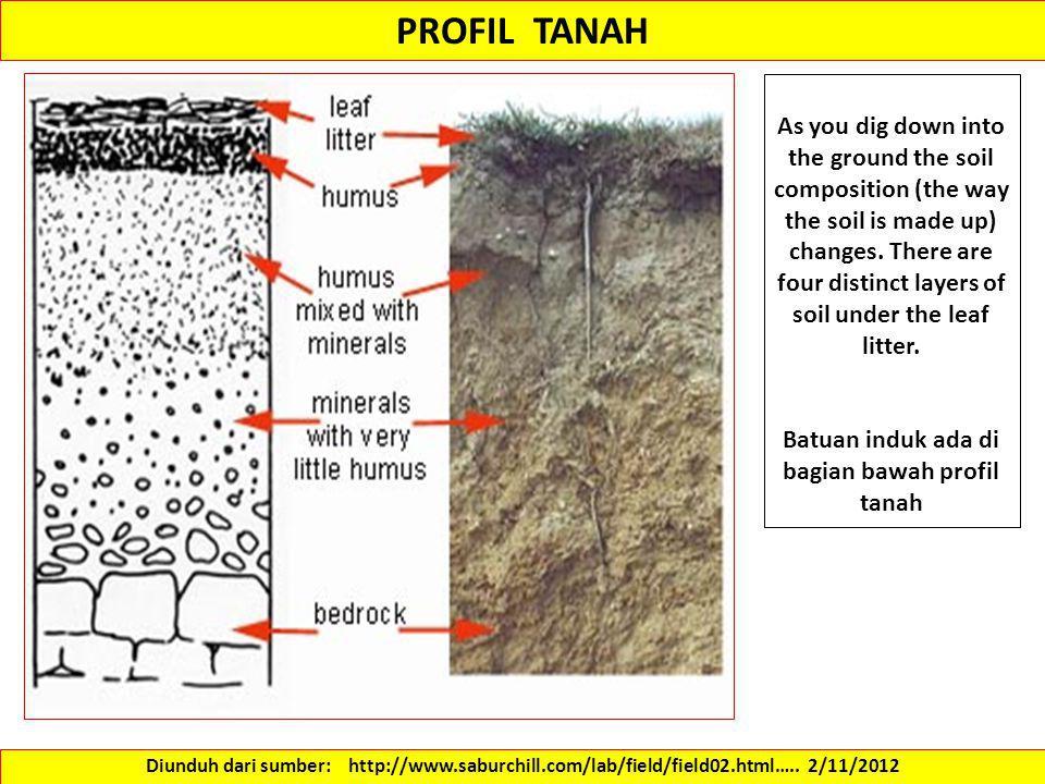 Batuan induk ada di bagian bawah profil tanah
