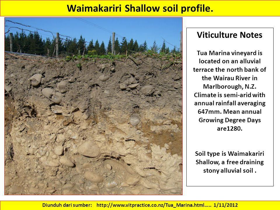Waimakariri Shallow soil profile.