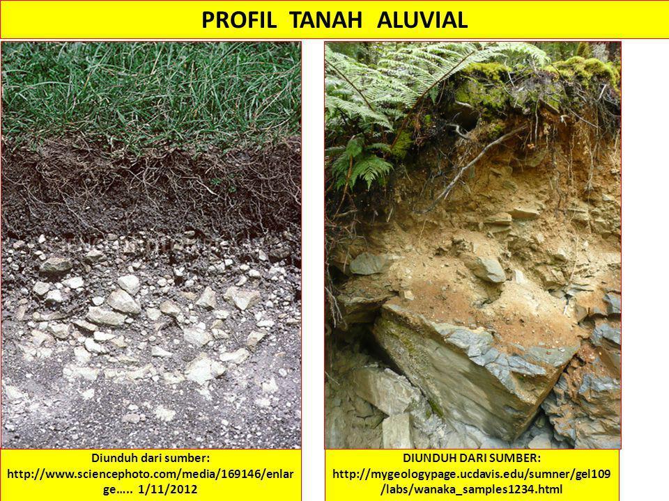 PROFIL TANAH ALUVIAL Diunduh dari sumber: http://www.sciencephoto.com/media/169146/enlarge….. 1/11/2012.