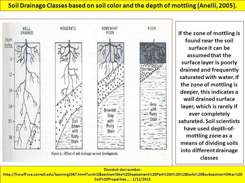 Soil Drainage Classes based on soil color and the depth of mottling (Anelli, 2005).