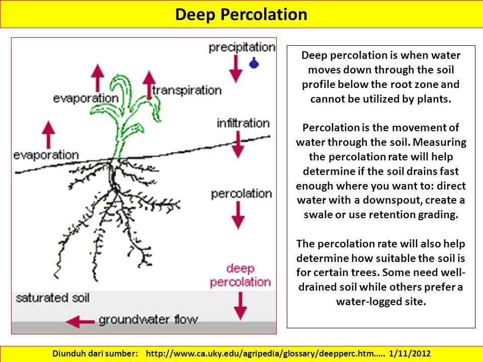 Deep Percolation Deep percolation is when water moves down through the soil profile below the root zone and cannot be utilized by plants.