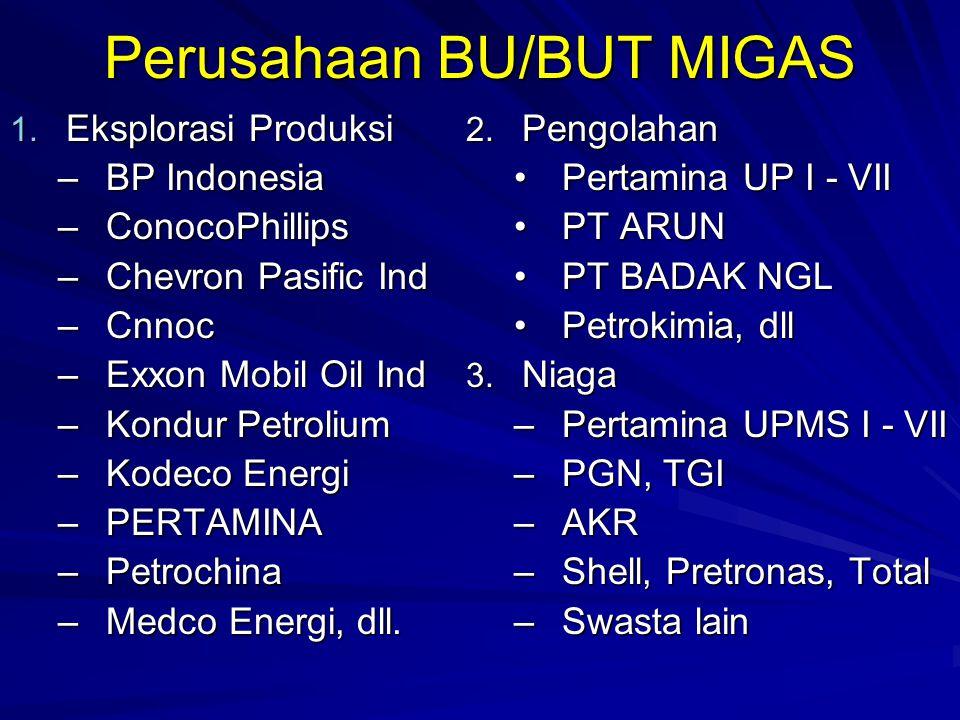Perusahaan BU/BUT MIGAS