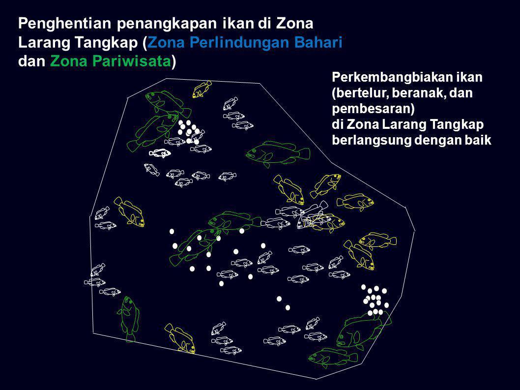 Penghentian penangkapan ikan di Zona Larang Tangkap (Zona Perlindungan Bahari dan Zona Pariwisata)