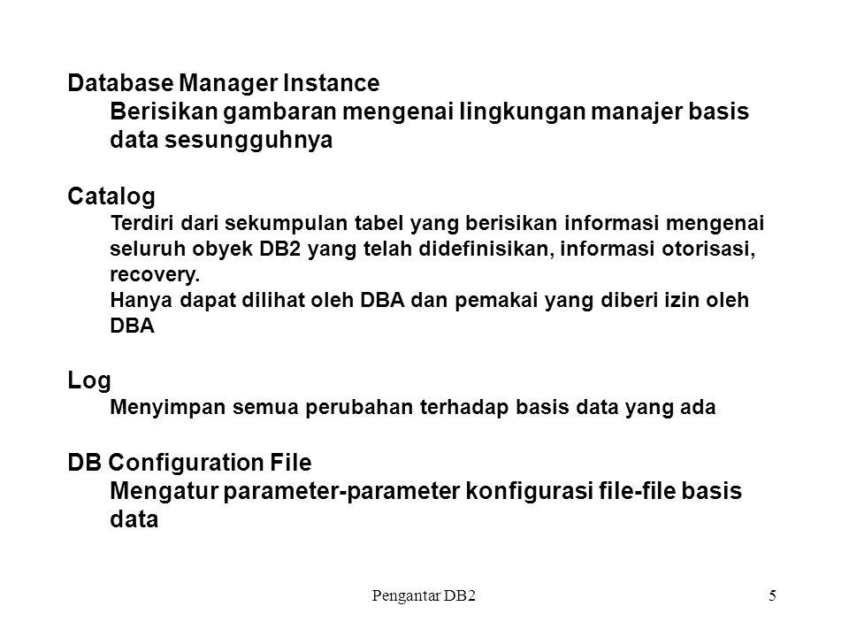 Database Manager Instance