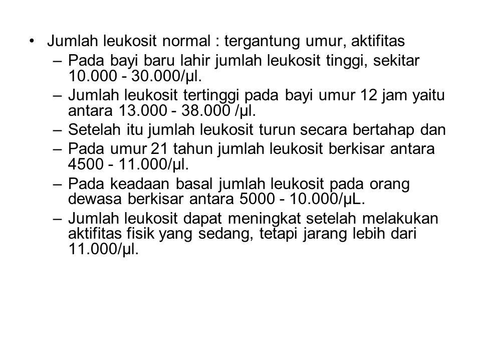 Jumlah leukosit normal : tergantung umur, aktifitas