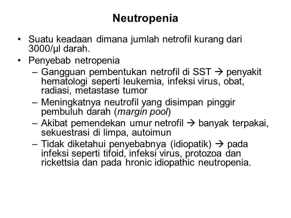 Neutropenia Suatu keadaan dimana jumlah netrofil kurang dari 3000/µl darah. Penyebab netropenia.