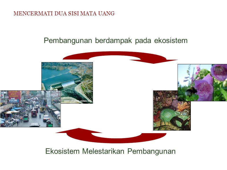 Pembangunan berdampak pada ekosistem