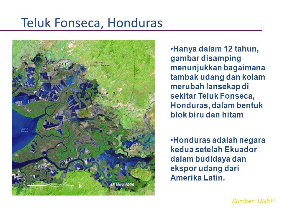 Teluk Fonseca, Honduras
