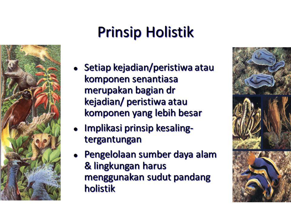 Prinsip Holistik Setiap kejadian/peristiwa atau komponen senantiasa merupakan bagian dr kejadian/ peristiwa atau komponen yang lebih besar.