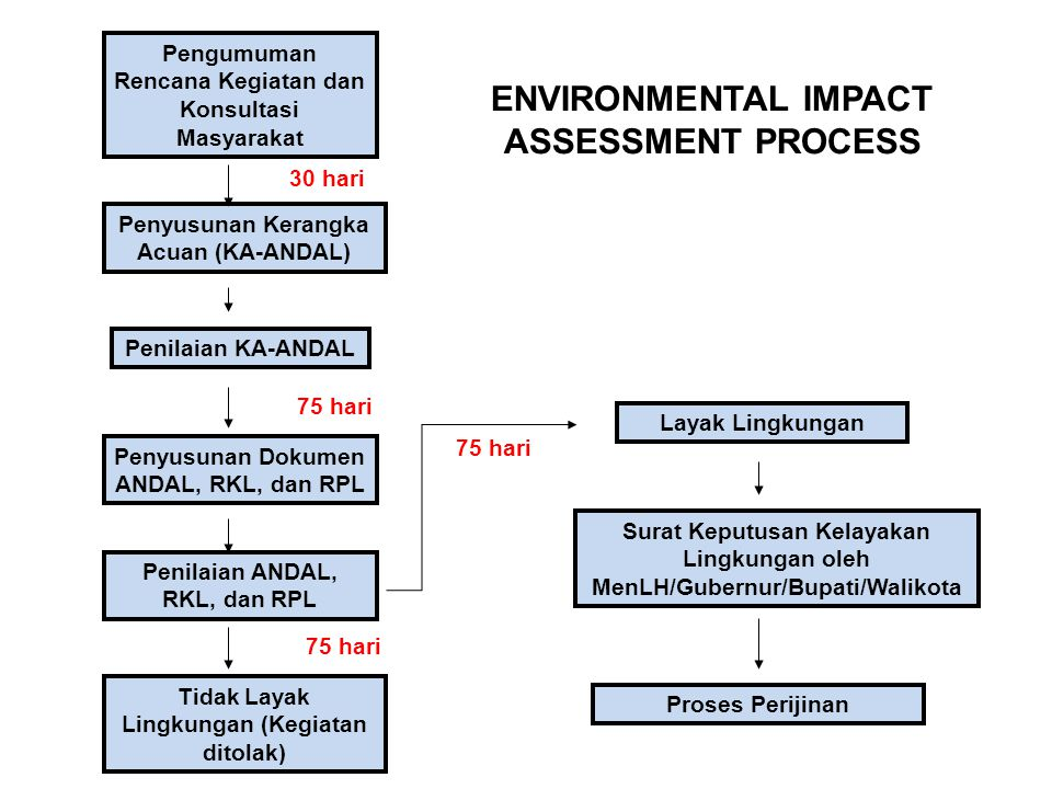 ENVIRONMENTAL IMPACT ASSESSMENT PROCESS