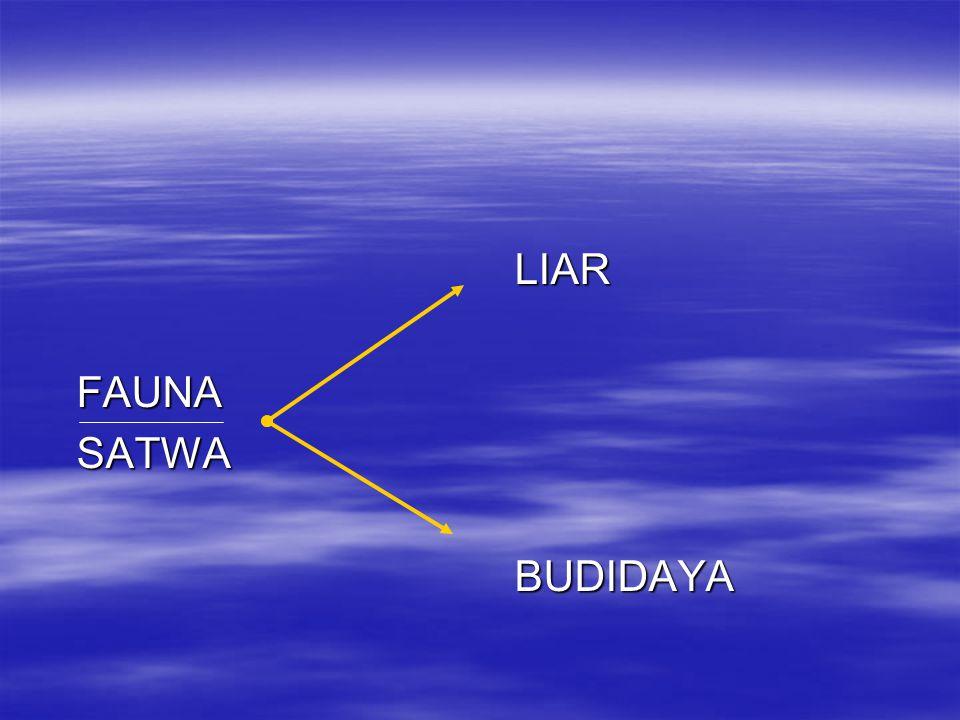 LIAR FAUNA SATWA BUDIDAYA