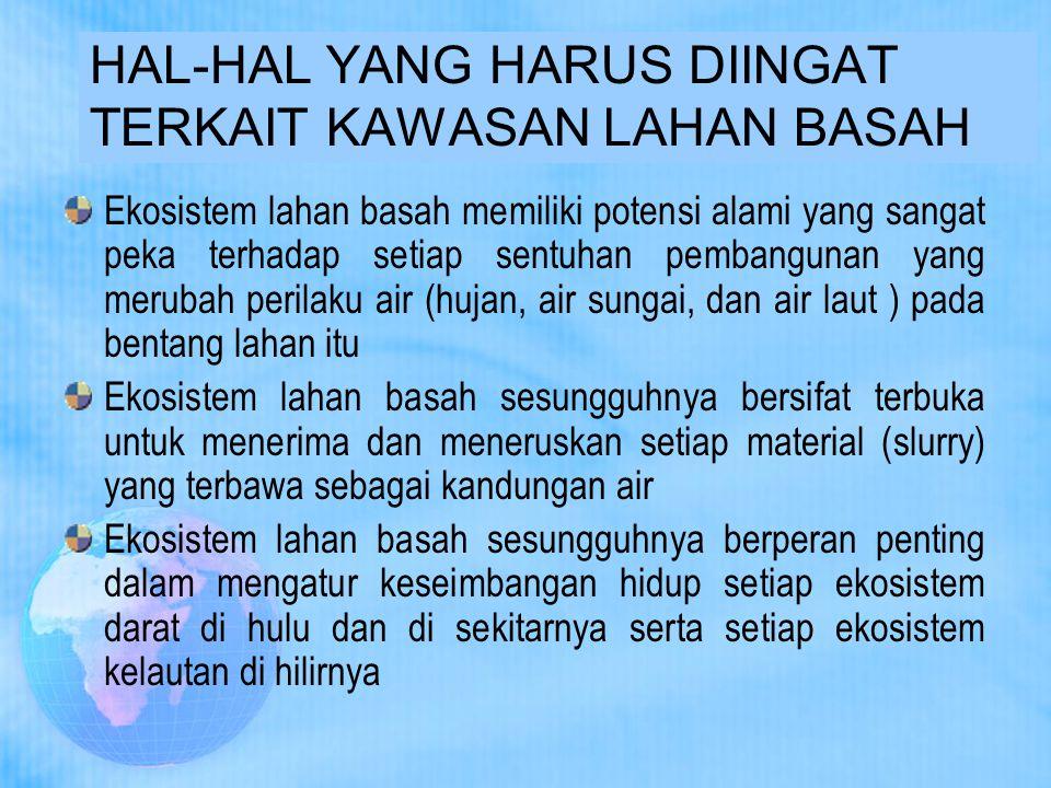 HAL-HAL YANG HARUS DIINGAT TERKAIT KAWASAN LAHAN BASAH