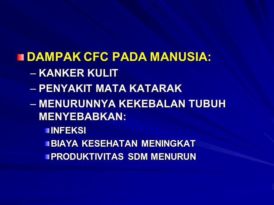 DAMPAK CFC PADA MANUSIA: