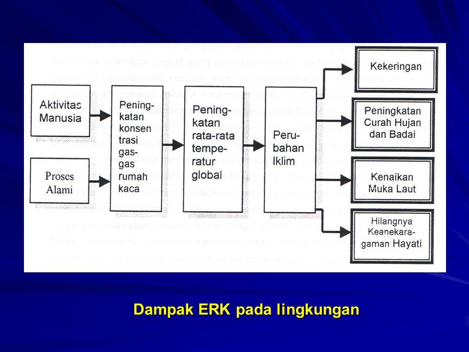 Dampak ERK pada lingkungan