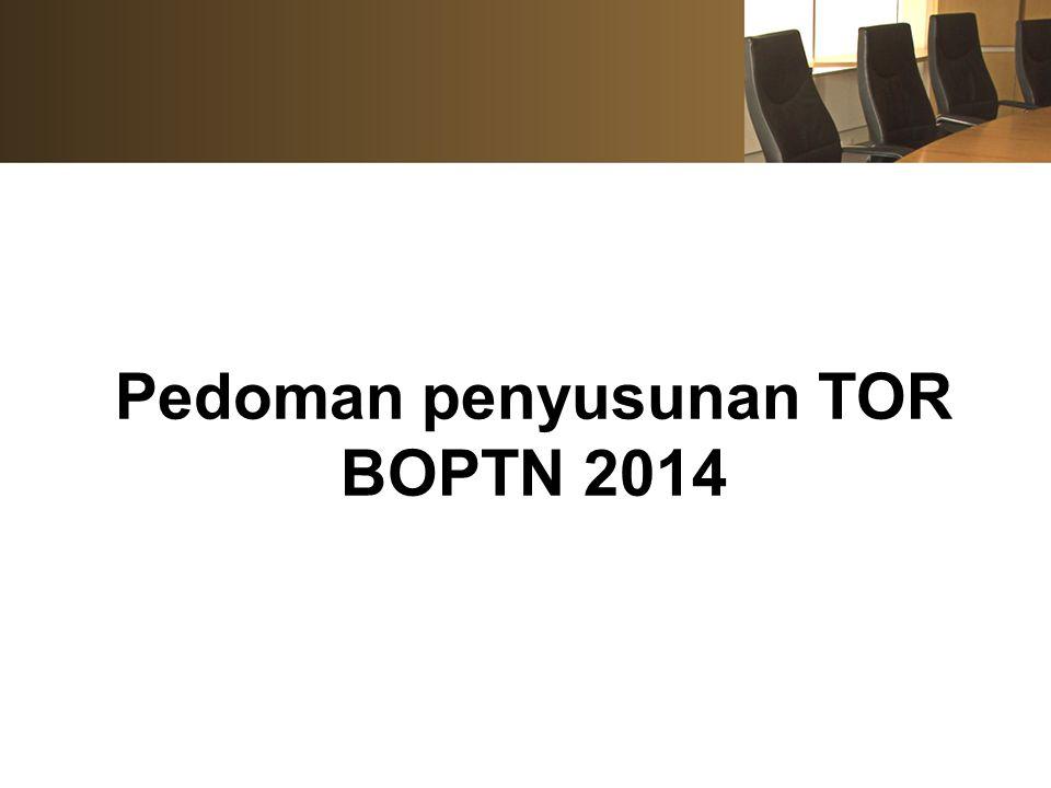 Pedoman penyusunan TOR BOPTN 2014