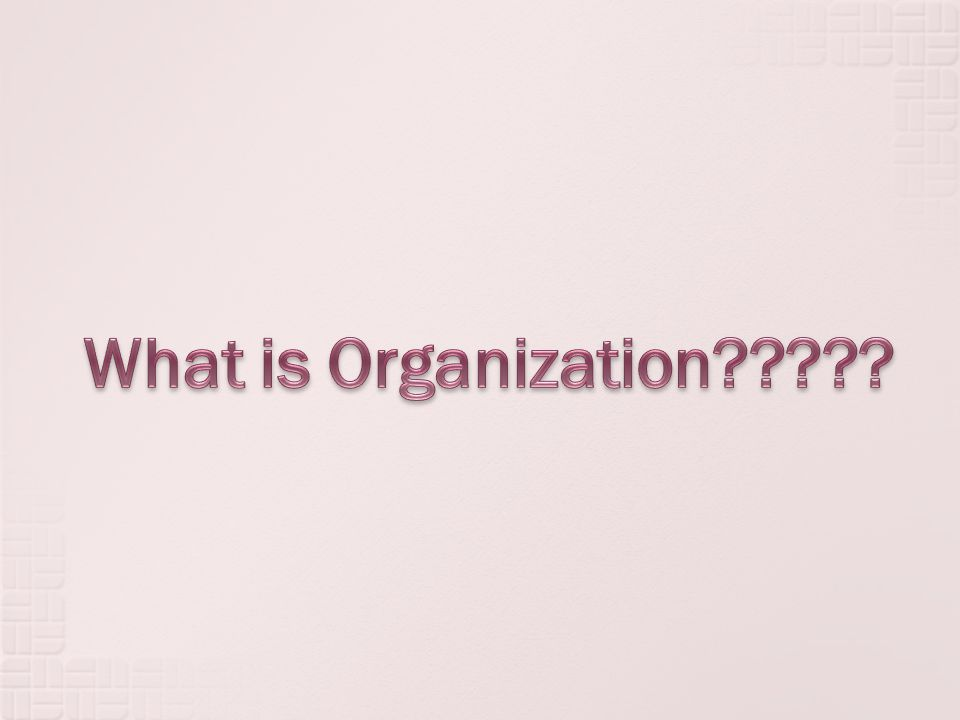 What is Organization