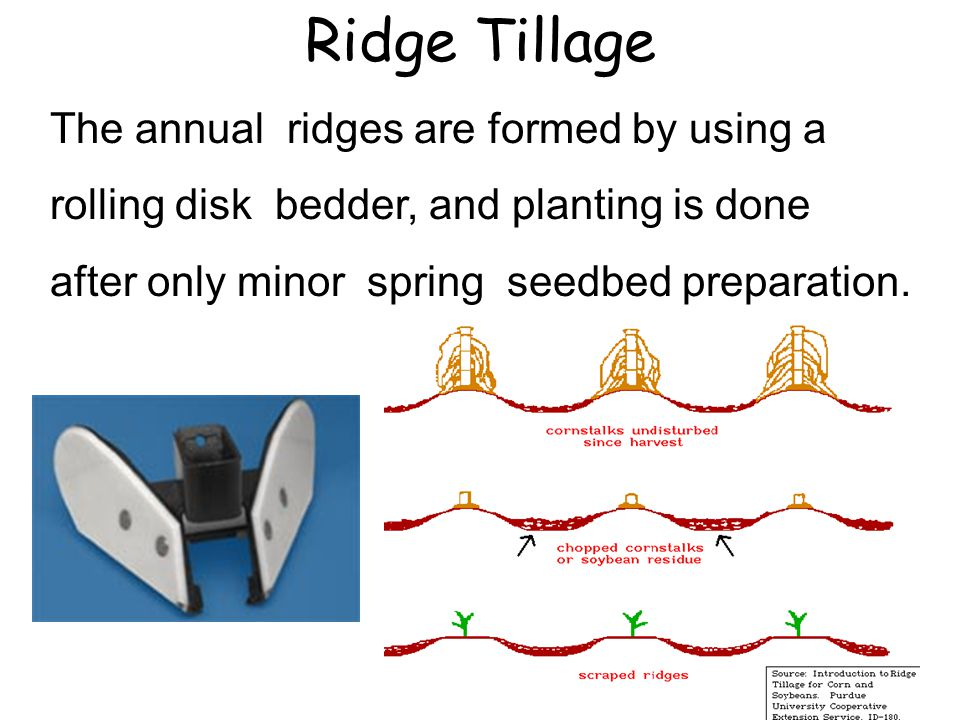 Ridge Tillage The annual ridges are formed by using a