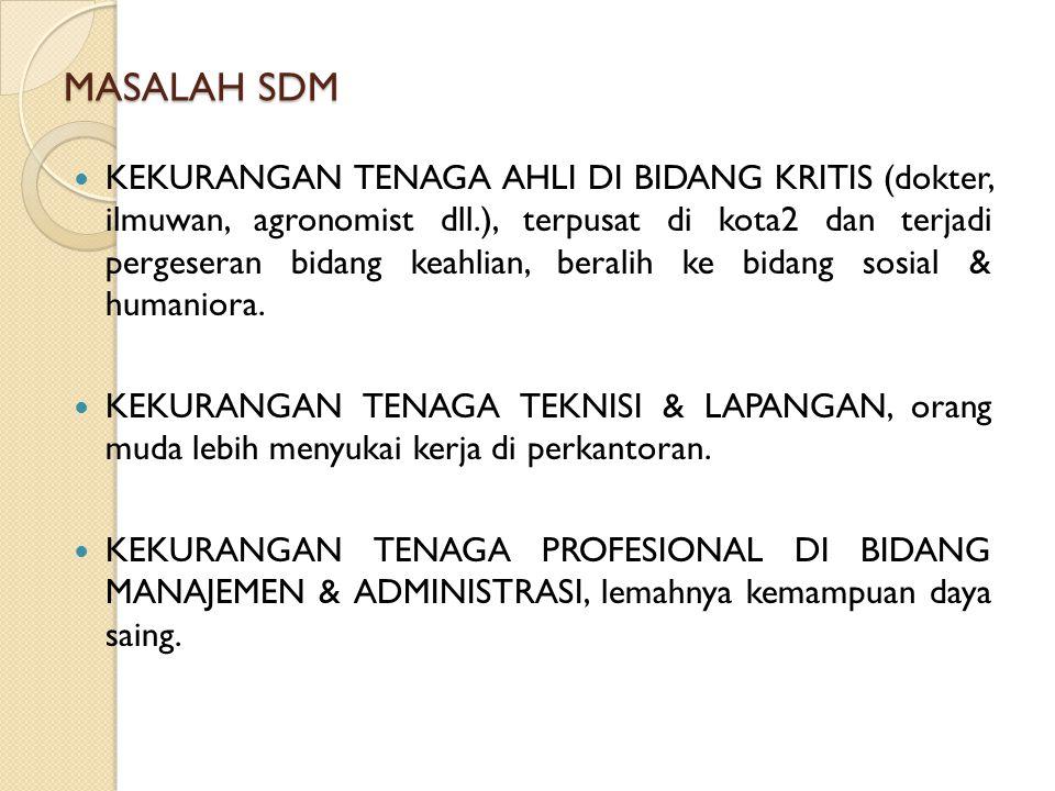 MASALAH SDM