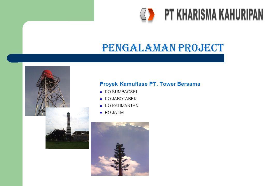 PENGALAMAN PROJECT Proyek Kamuflase PT. Tower Bersama RO SUMBAGSEL