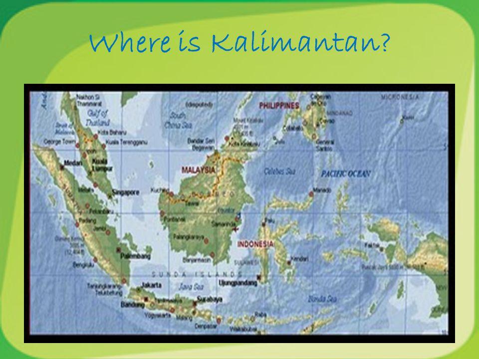 Where is Kalimantan
