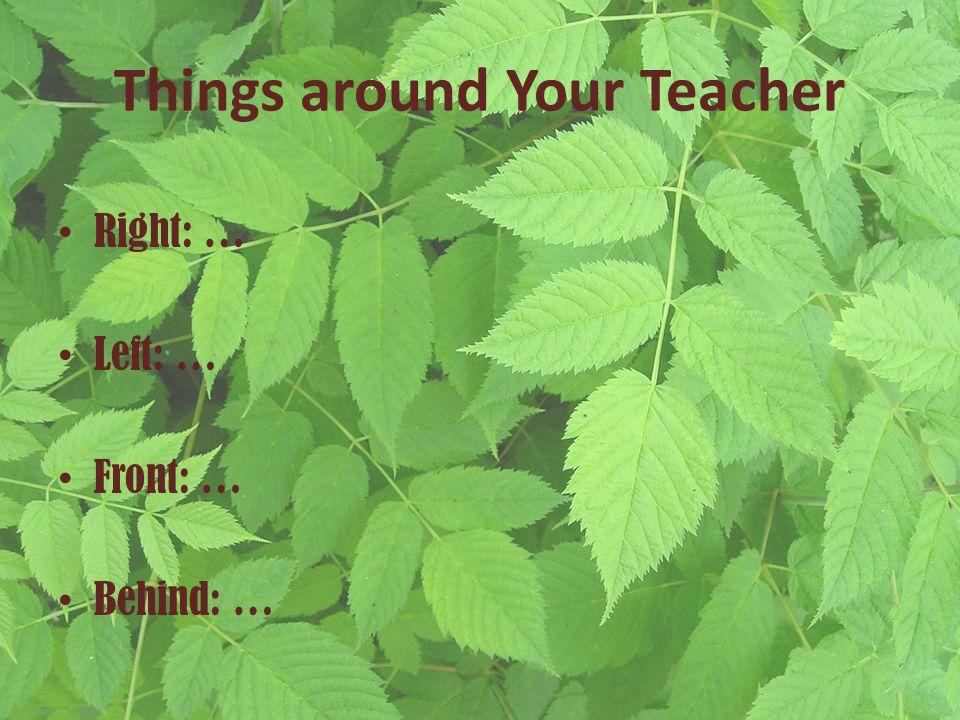 Things around Your Teacher