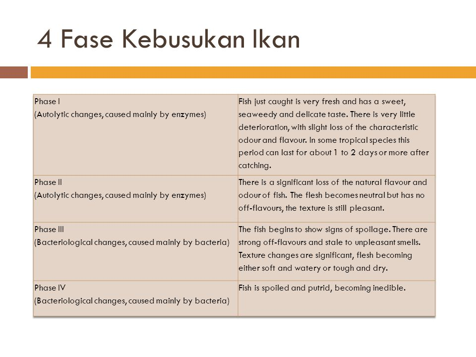 4 Fase Kebusukan Ikan Phase I (Autolytic changes, caused mainly by enzymes)