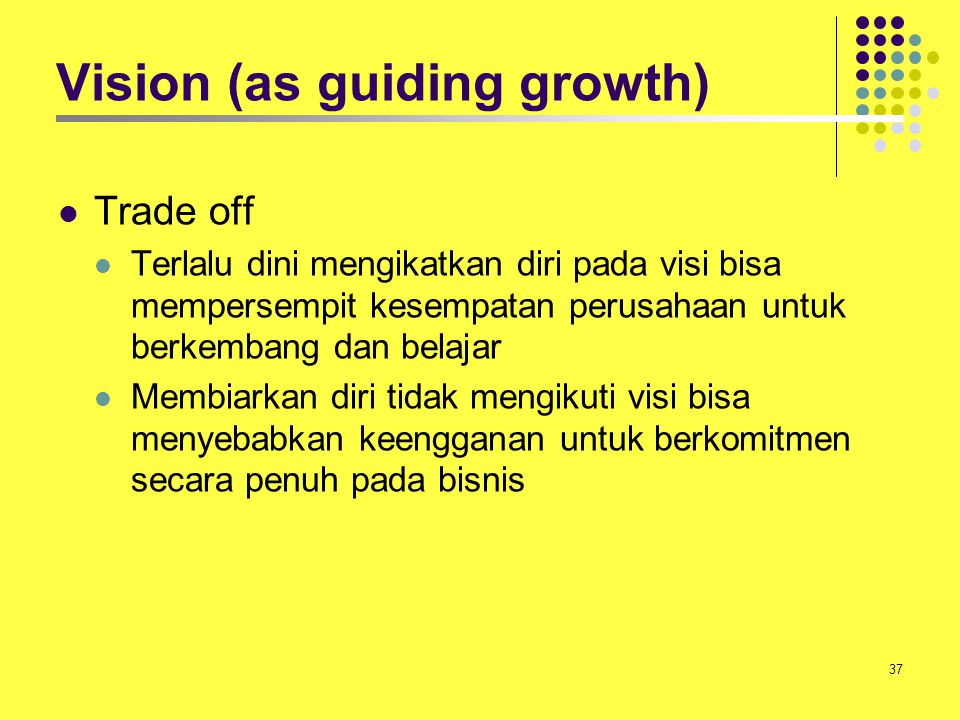 Vision (as guiding growth)