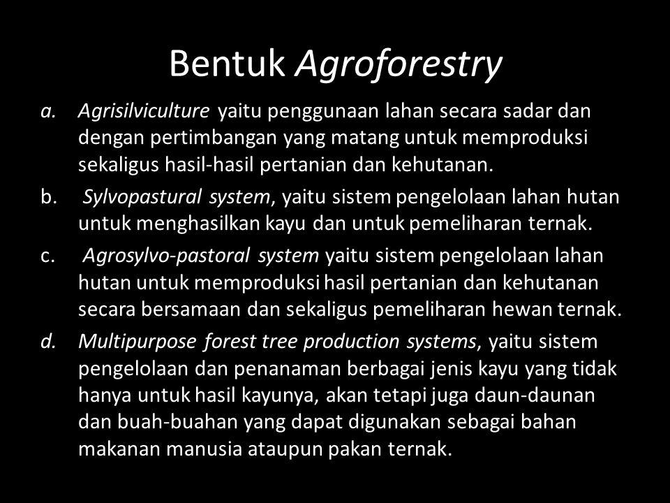 Bentuk Agroforestry