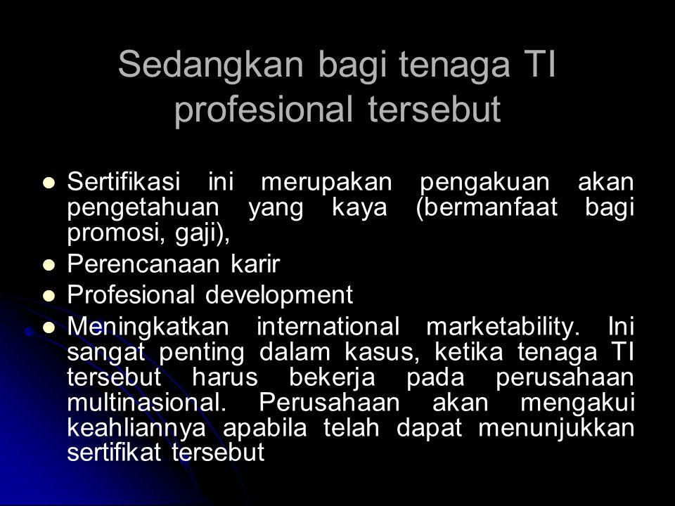 Sedangkan bagi tenaga TI profesional tersebut