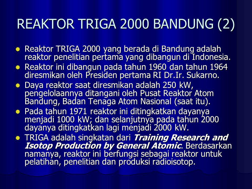 REAKTOR TRIGA 2000 BANDUNG (2)
