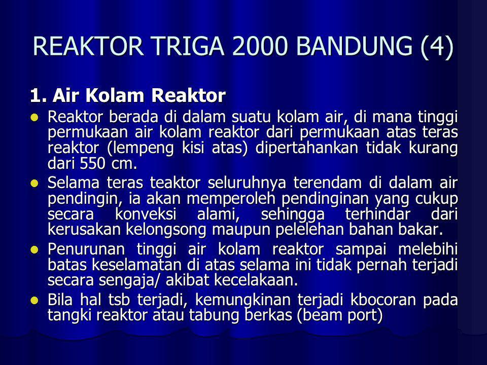 REAKTOR TRIGA 2000 BANDUNG (4)
