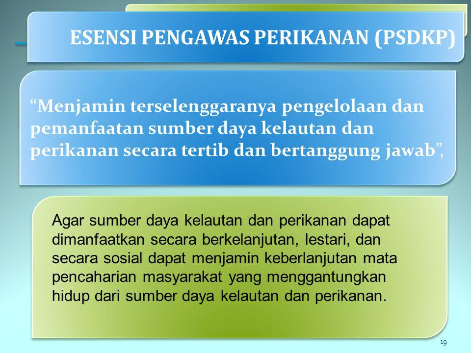 ESENSI PENGAWAS PERIKANAN (PSDKP)