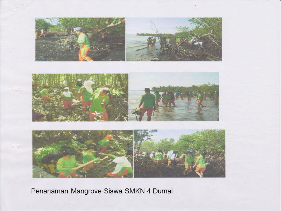 Penanaman Mangrove Siswa SMKN 4 Dumai