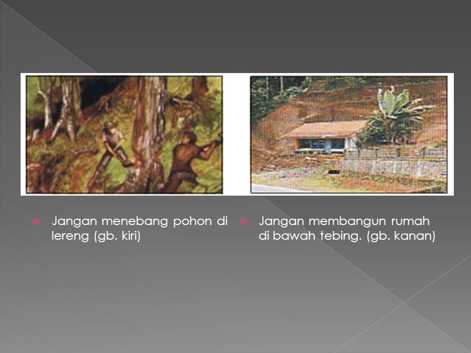 Jangan menebang pohon di lereng (gb. kiri)