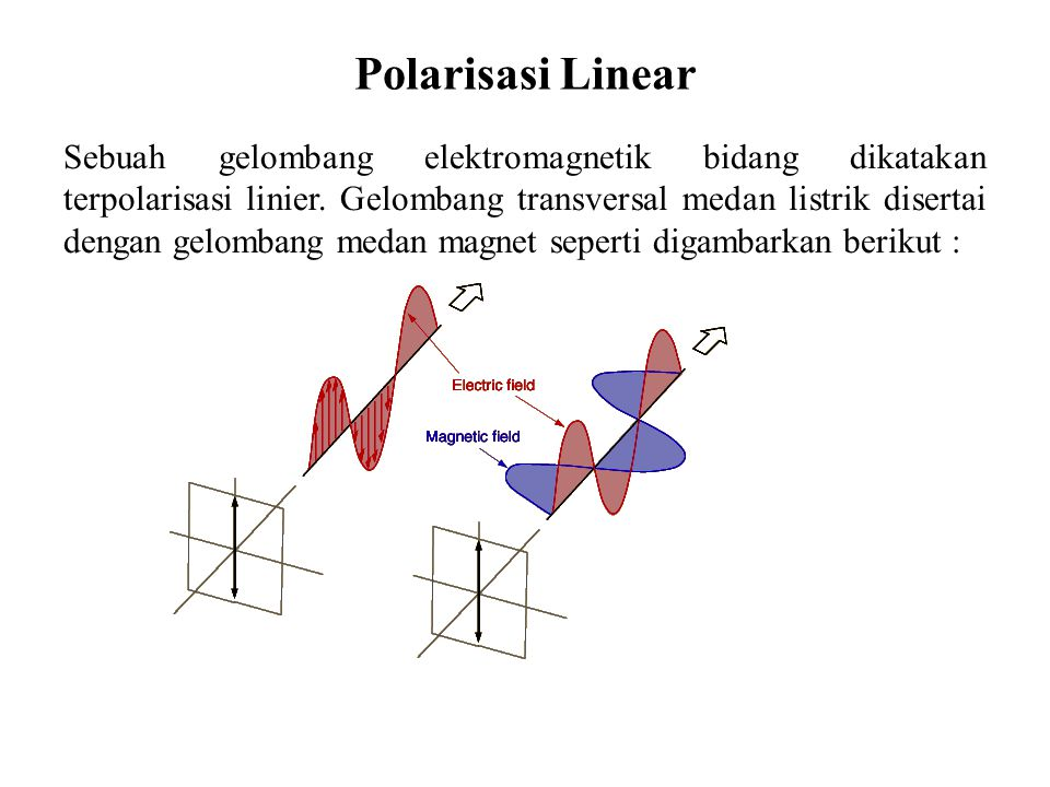 Polarisasi Linear