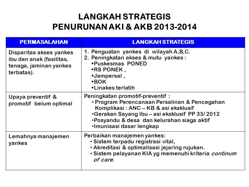 LANGKAH STRATEGIS PENURUNAN AKI & AKB 2013-2014
