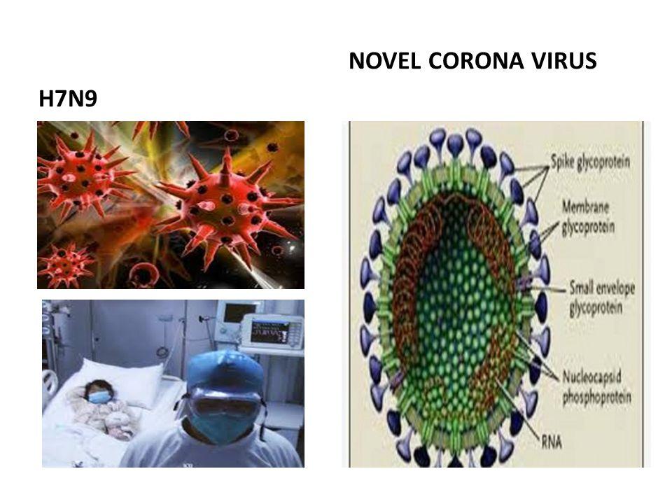 H7N9 NOVEL CORONA VIRUS