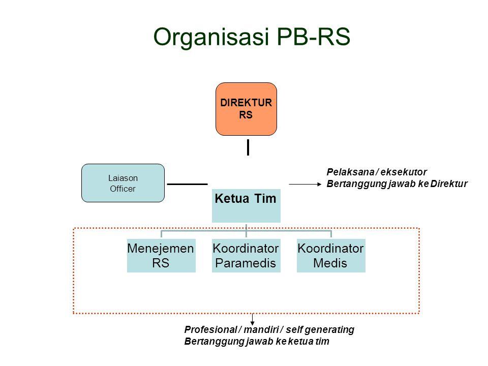 Organisasi PB-RS DIREKTUR RS Pelaksana / eksekutor