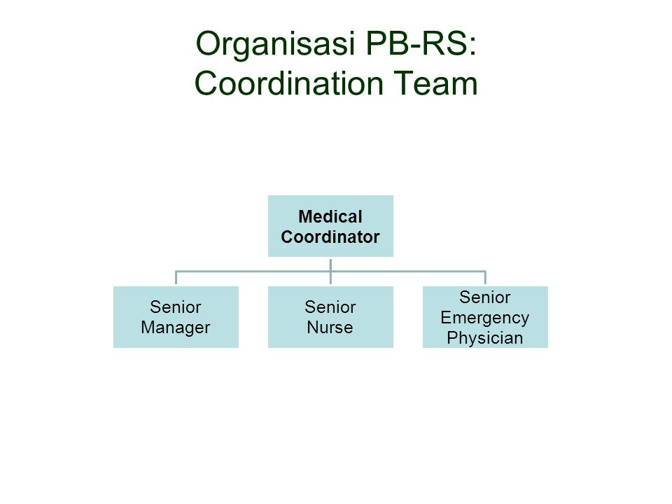 Organisasi PB-RS: Coordination Team