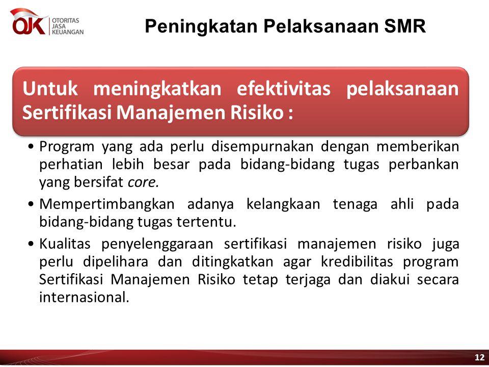 Peningkatan Pelaksanaan SMR