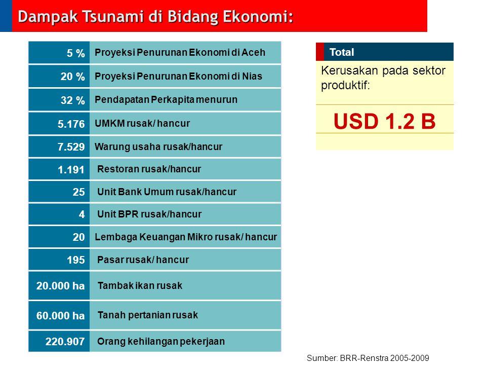 USD 1.2 B Dampak Tsunami di Bidang Ekonomi: