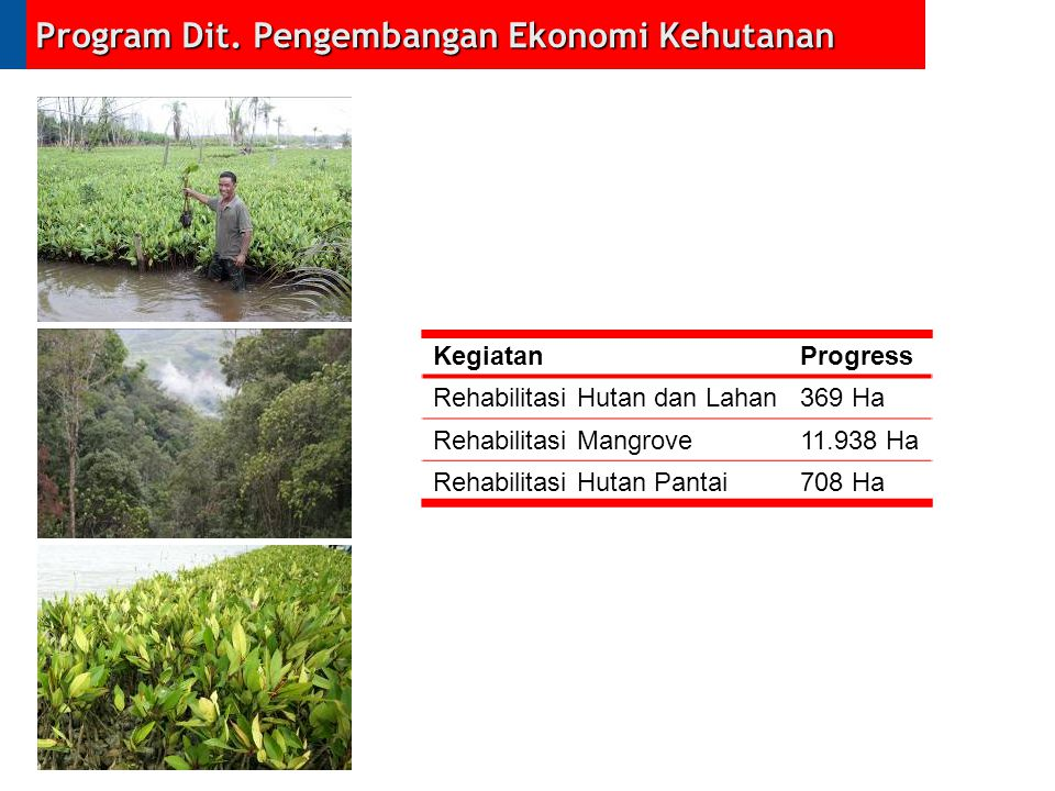 Program Dit. Pengembangan Ekonomi Kehutanan