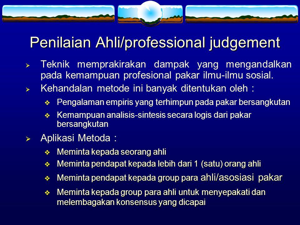 Penilaian Ahli/professional judgement