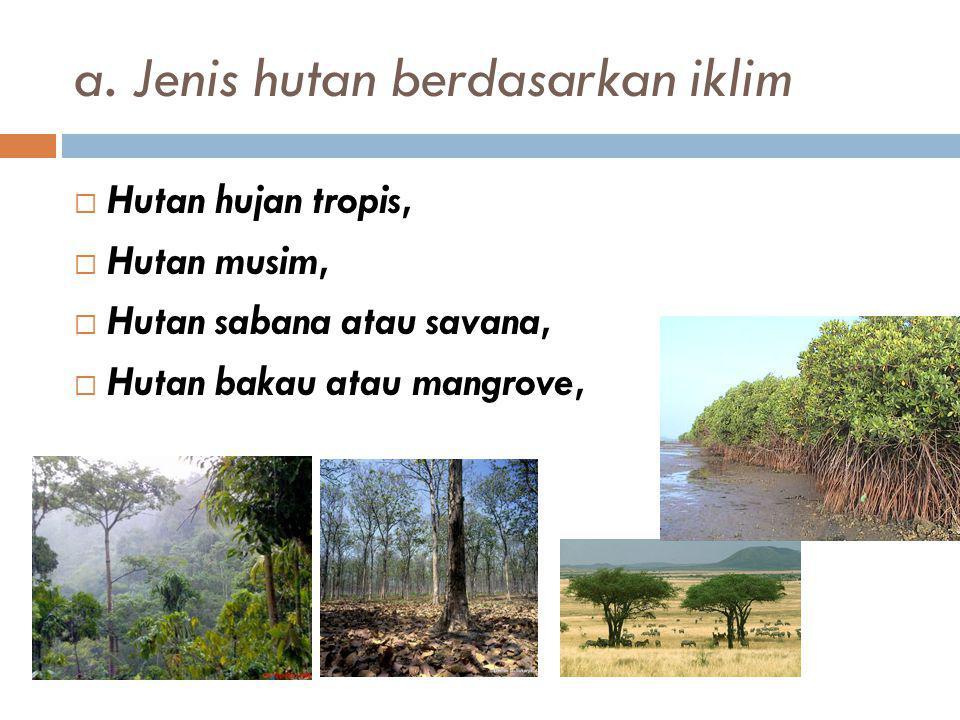 a. Jenis hutan berdasarkan iklim