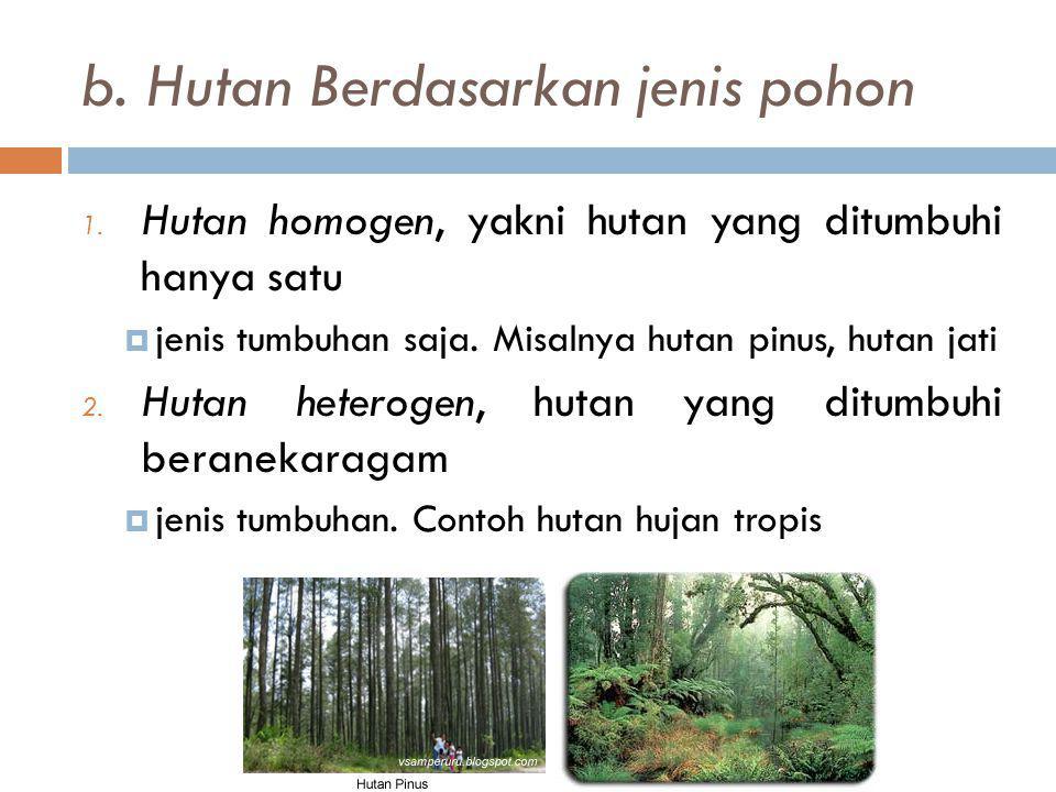 b. Hutan Berdasarkan jenis pohon