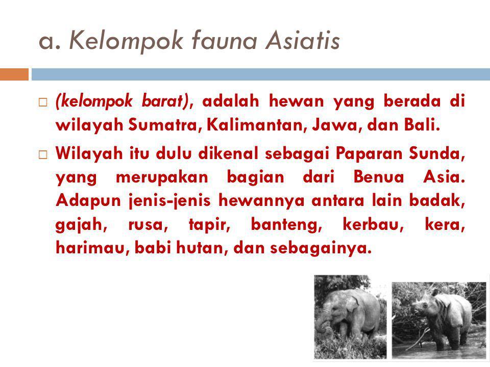 a. Kelompok fauna Asiatis