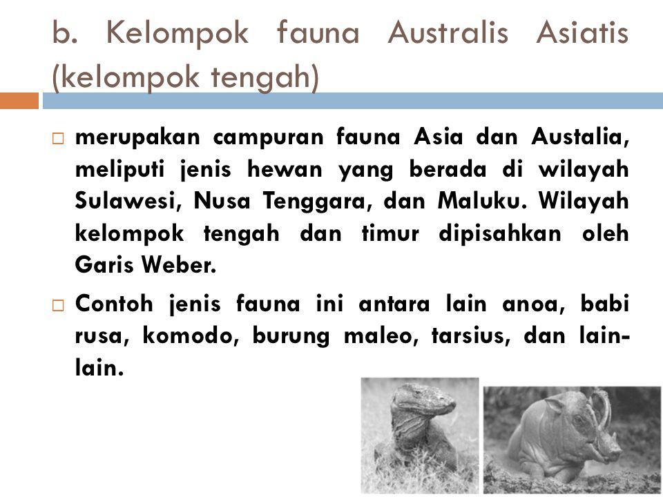 b. Kelompok fauna Australis Asiatis (kelompok tengah)